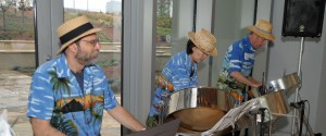 Steel Drums Cropped